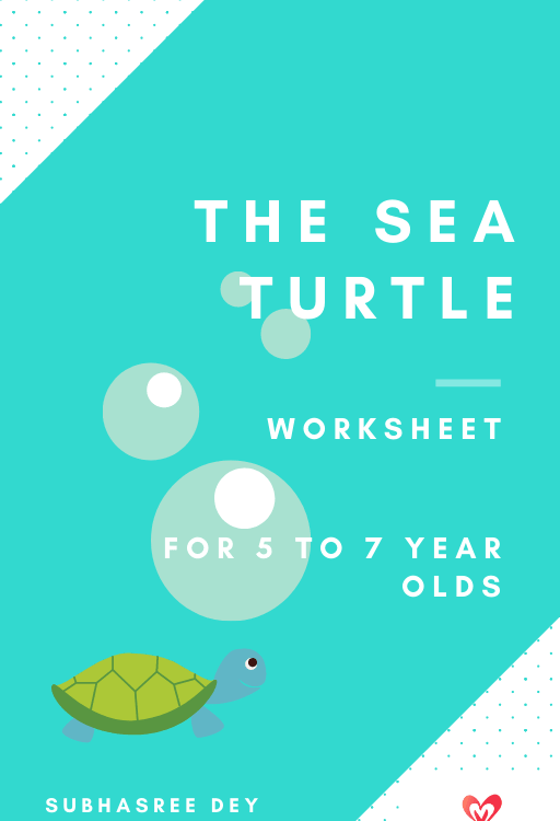 This is a ebook cover which represents a English comprehension called ' The sea turtle'